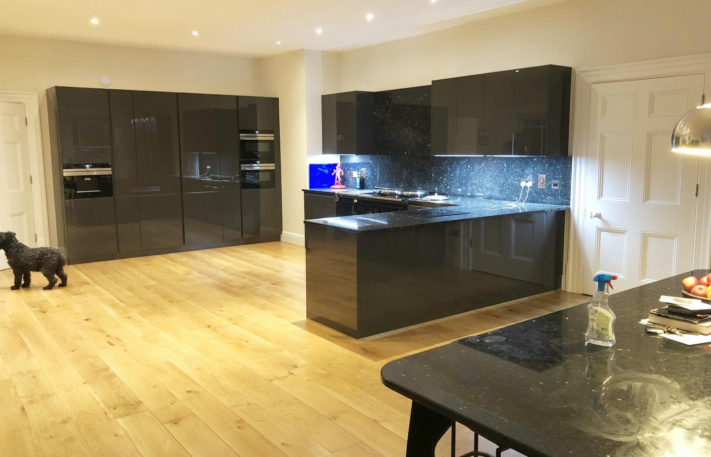 Tall high gloss kitchen units